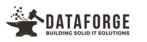 Dataforge Burlington Ontario IT Support header image